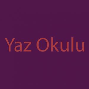 2018 Yaz Okulu